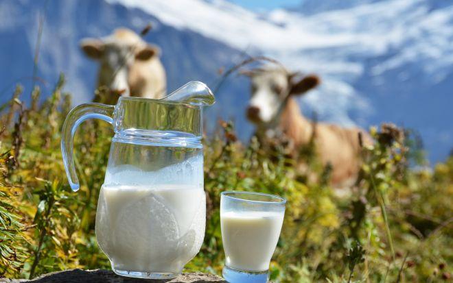 6 продуктів, в яких  кальція знаходиться більше ніж в молоці