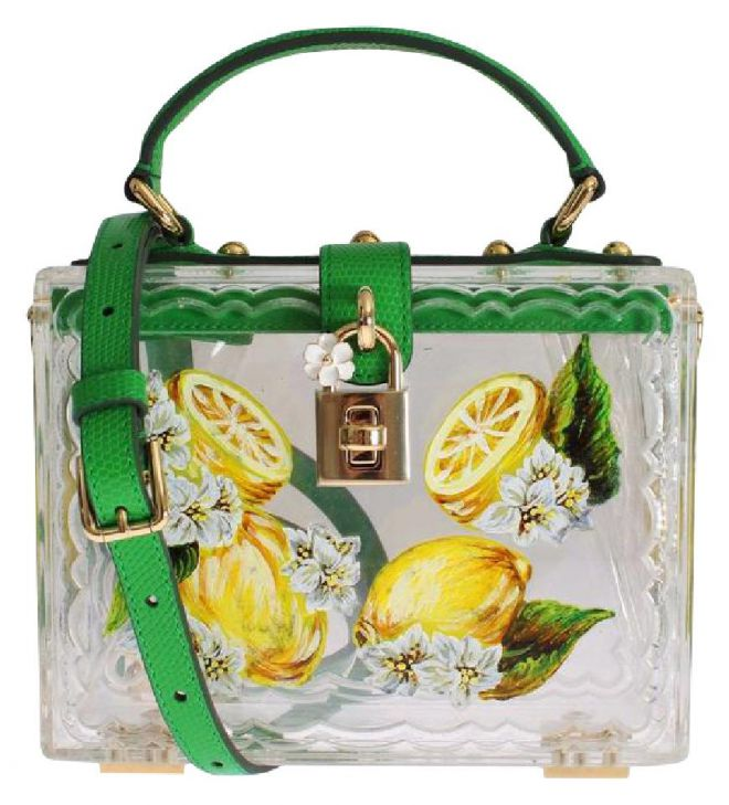 1359_dolce-and-gabbana-d-and-g-lemon-shoulder-bag-clear-210614-0-1.jpg (73.67 Kb)
