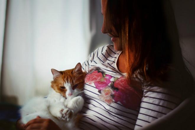 Від яких хвороб нас захистять коти
