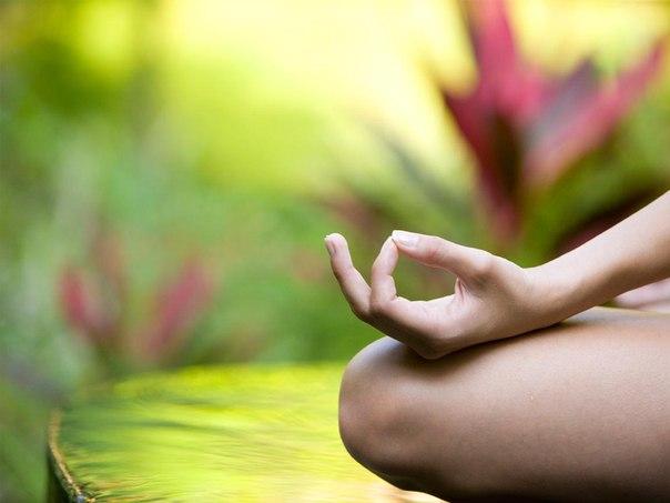 Корисні властивості йоги