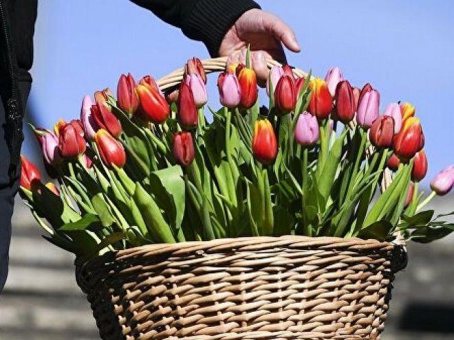 Покупка цветов к 8 Марта онлайн