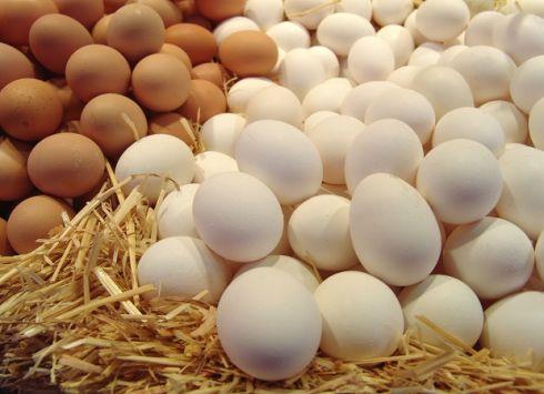 Худнемо на яйцях
