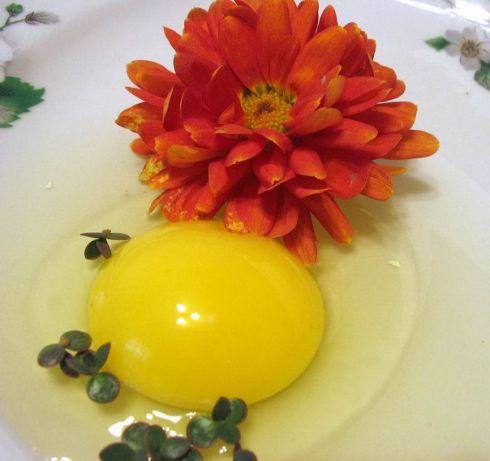 Яйцо вместо шампуня