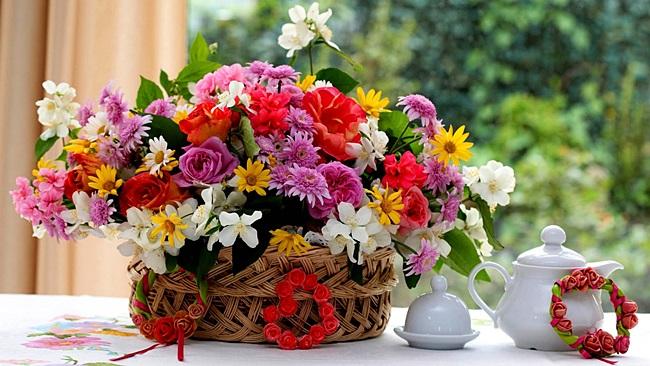 Як впливають квіти на людину?
