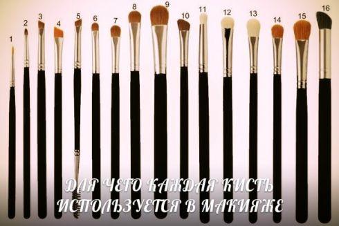 Виды кистей для макияжа и их назначение