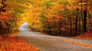 5 причин полюбити осінь